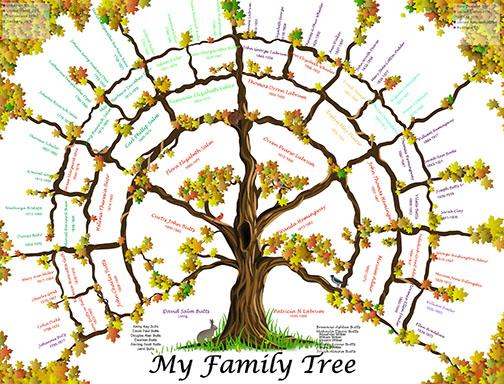 *New 6 Gen Tree Fall Maple Leaf 18x24