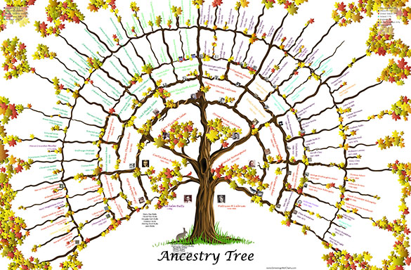 *Beta Testing , 7 Gen Picture  Tree Fall Maple Leaf 24x36