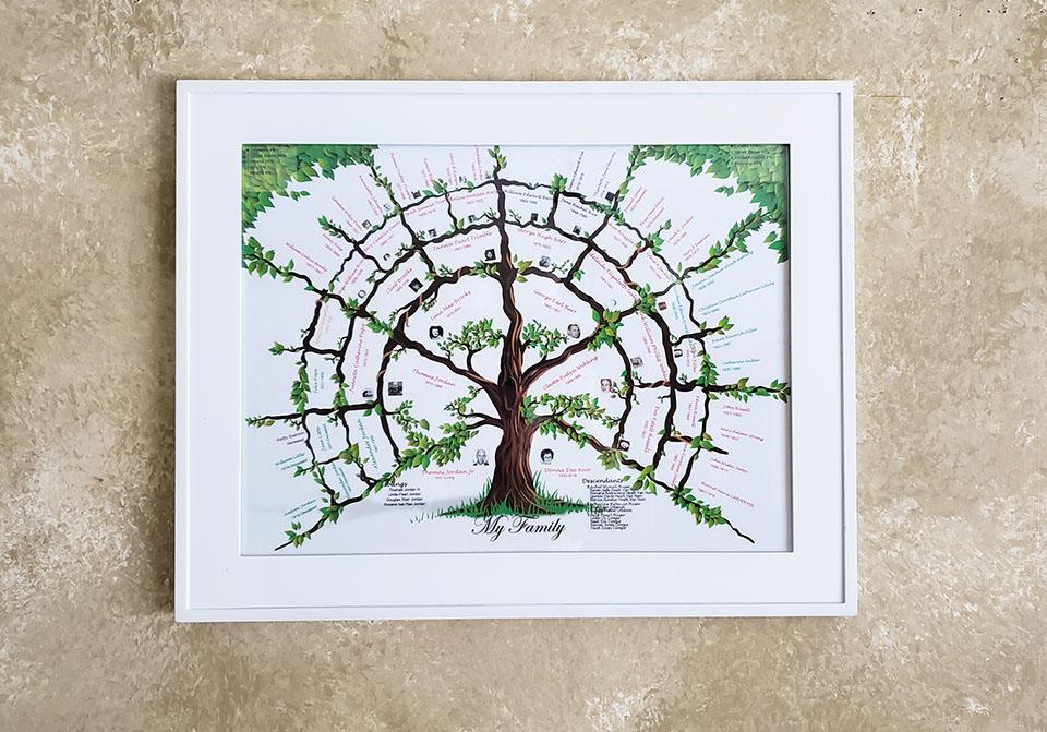 *New 6 Gen Tree Pictures